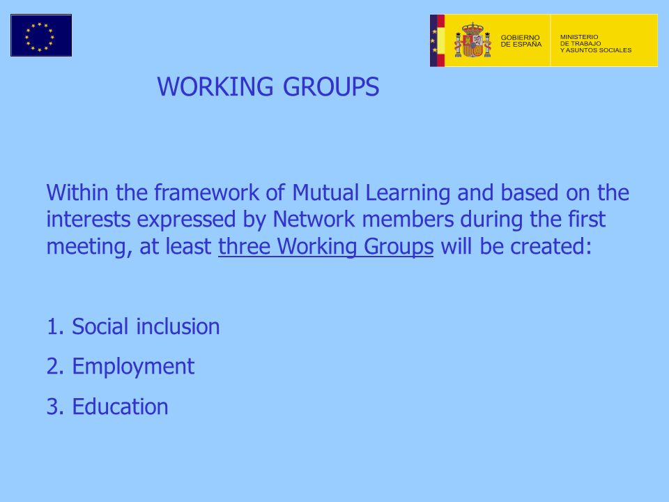 WORKING GROUPS Within the framework of Mutual Learning and based on the interests expressed by Network members during the first meeting, at least three Working Groups will be created: 1.