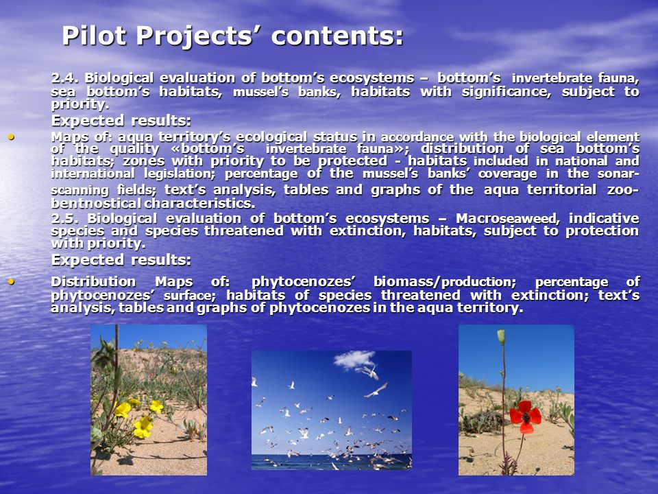 Pilot Projects contents: 2.4.