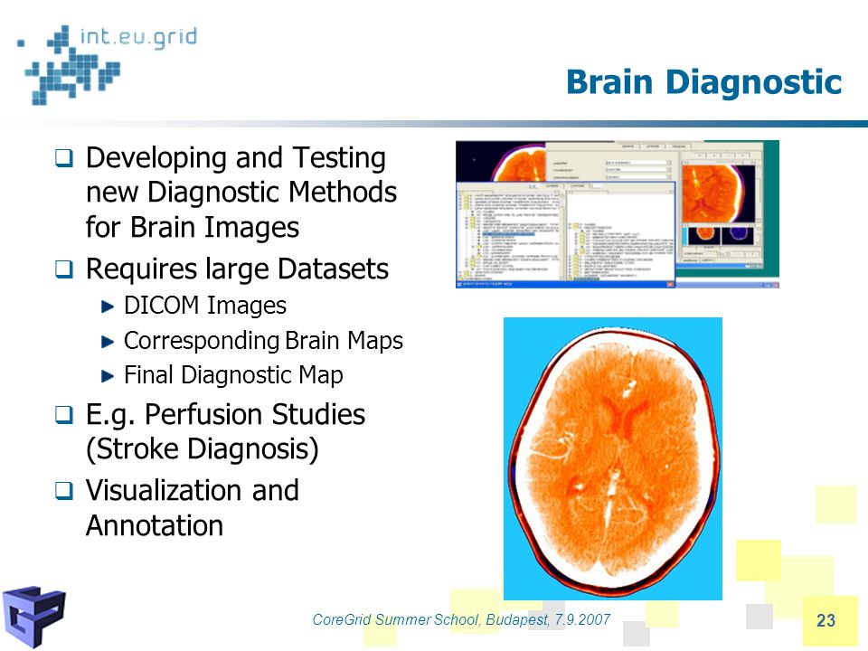 CoreGrid Summer School, Budapest, 7.9.2007 23 Brain Diagnostic Developing and Testing new Diagnostic Methods for Brain Images Requires large Datasets DICOM Images Corresponding Brain Maps Final Diagnostic Map E.g.