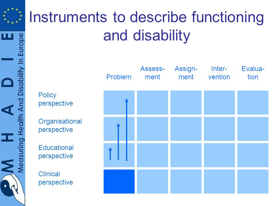 Instruments to describe functioning and disability Problem Assess- ment Assign- ment Inter- vention Evalua- tion Policy perspective Organisational perspective Educational perspective Clinical perspective