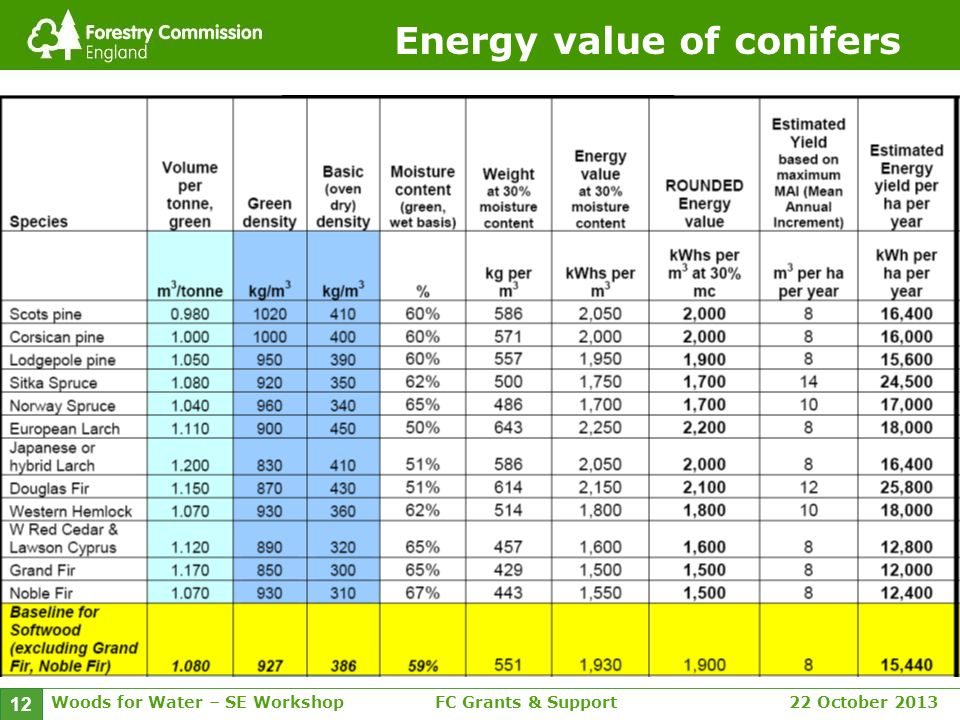 Woods for Water – SE WorkshopFC Grants & Support 22 October 2013 12 Energy value of conifers