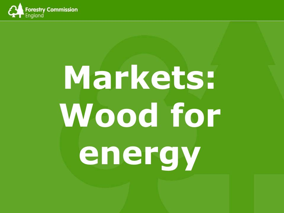 Markets: Wood for energy