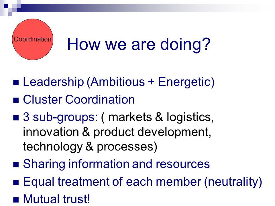Leadership (Ambitious + Energetic) Cluster Coordination 3 sub-groups: ( markets & logistics, innovation & product development, technology & processes) Sharing information and resources Equal treatment of each member (neutrality) Mutual trust.