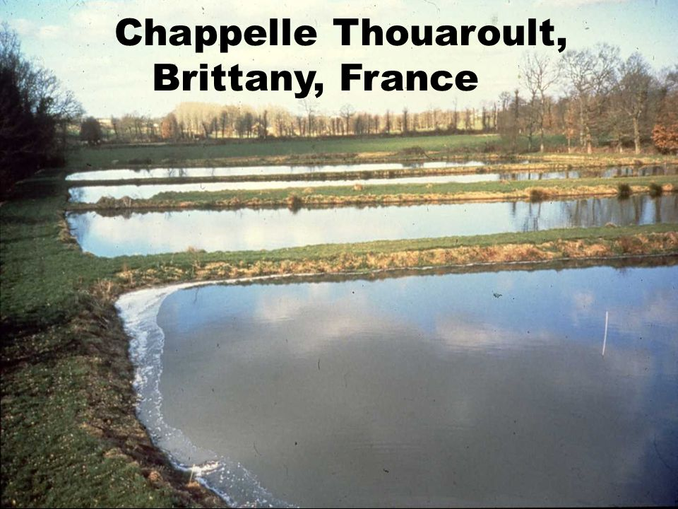 Chappelle Thouaroult, Brittany, France