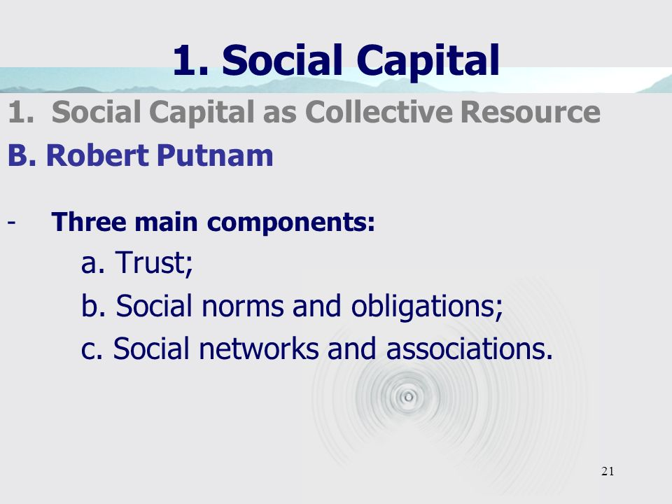 21 1. Social Capital 1.Social Capital as Collective Resource B.
