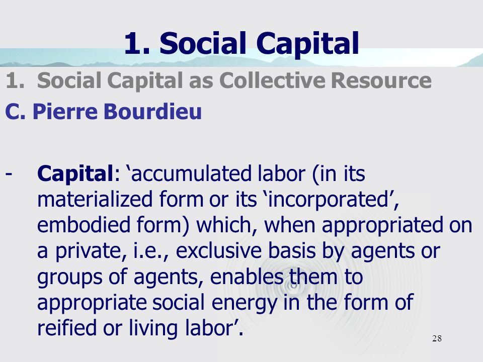 28 1. Social Capital 1.Social Capital as Collective Resource C.
