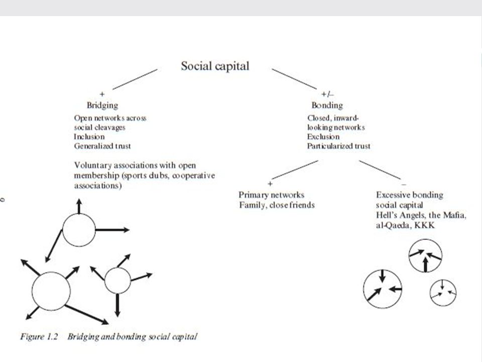 37 1. Social Capital 1.Social Capital as interdiscplinary programme
