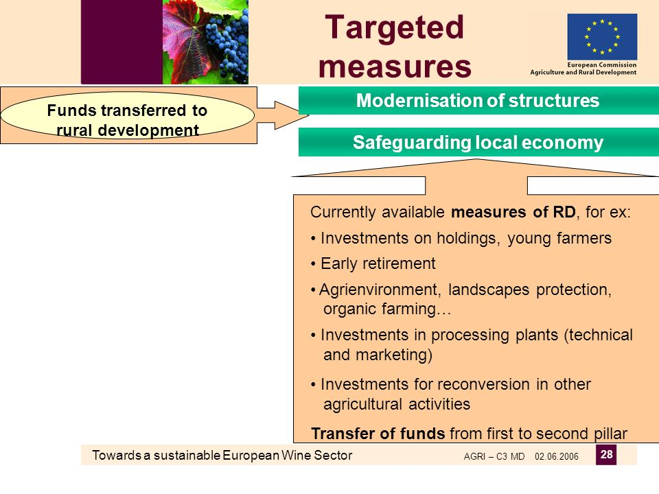 Towards a sustainable European Wine Sector AGRI – C3 MD 02.06.2006 28 Targeted measures Currently available measures of RD, for ex: Investments on holdings, young farmers Early retirement Agrienvironment, landscapes protection, organic farming… Investments in processing plants (technical and marketing) Investments for reconversion in other agricultural activities Transfer of funds from first to second pillar Funds transferred to rural development Modernisation of structures Safeguarding local economy