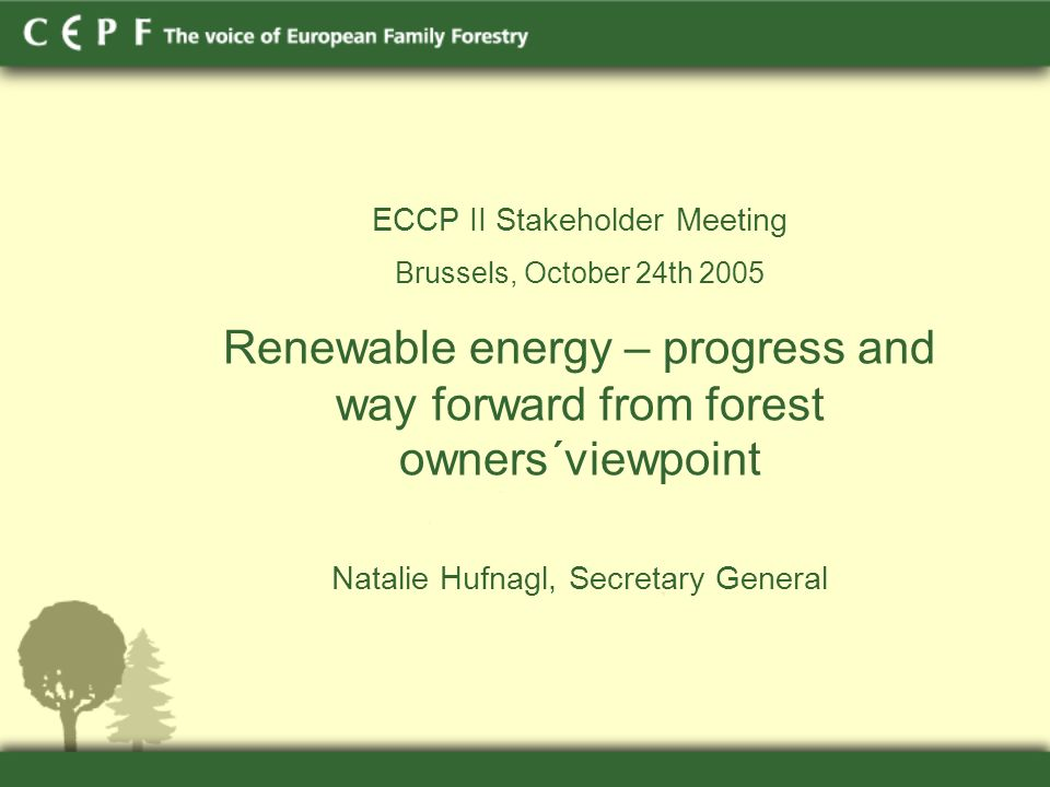 ECCP II Stakeholder Meeting Brussels, October 24th 2005 Renewable energy – progress and way forward from forest owners´viewpoint Natalie Hufnagl, Secretary General