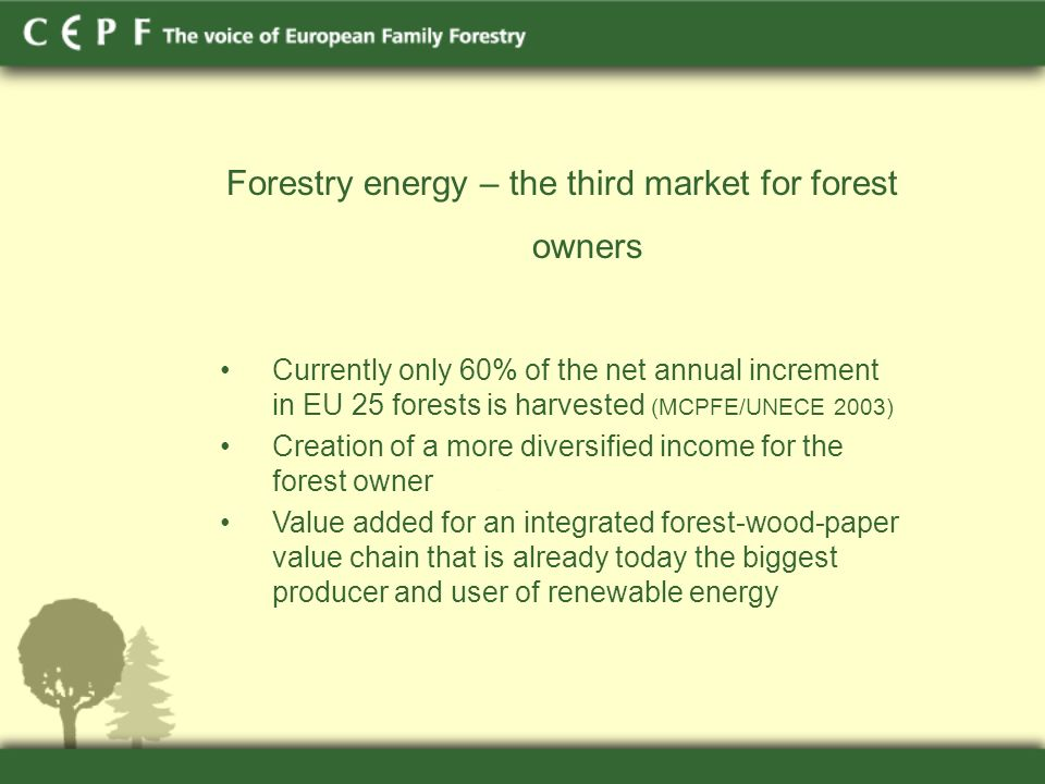 Forestry energy – the third market for forest owners Currently only 60% of the net annual increment in EU 25 forests is harvested (MCPFE/UNECE 2003) Creation of a more diversified income for the forest owner Value added for an integrated forest-wood-paper value chain that is already today the biggest producer and user of renewable energy