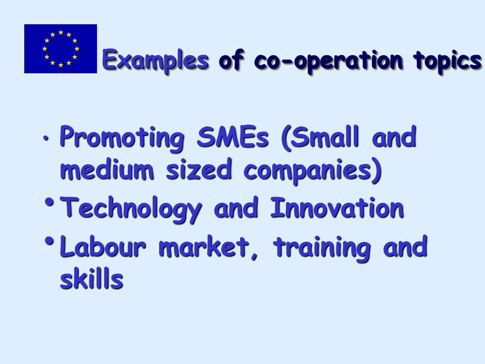 Examples of co-operation topics Promoting SMEs (Small and medium sized companies) Promoting SMEs (Small and medium sized companies) Technology and Innovation Technology and Innovation Labour market, training and skills Labour market, training and skills