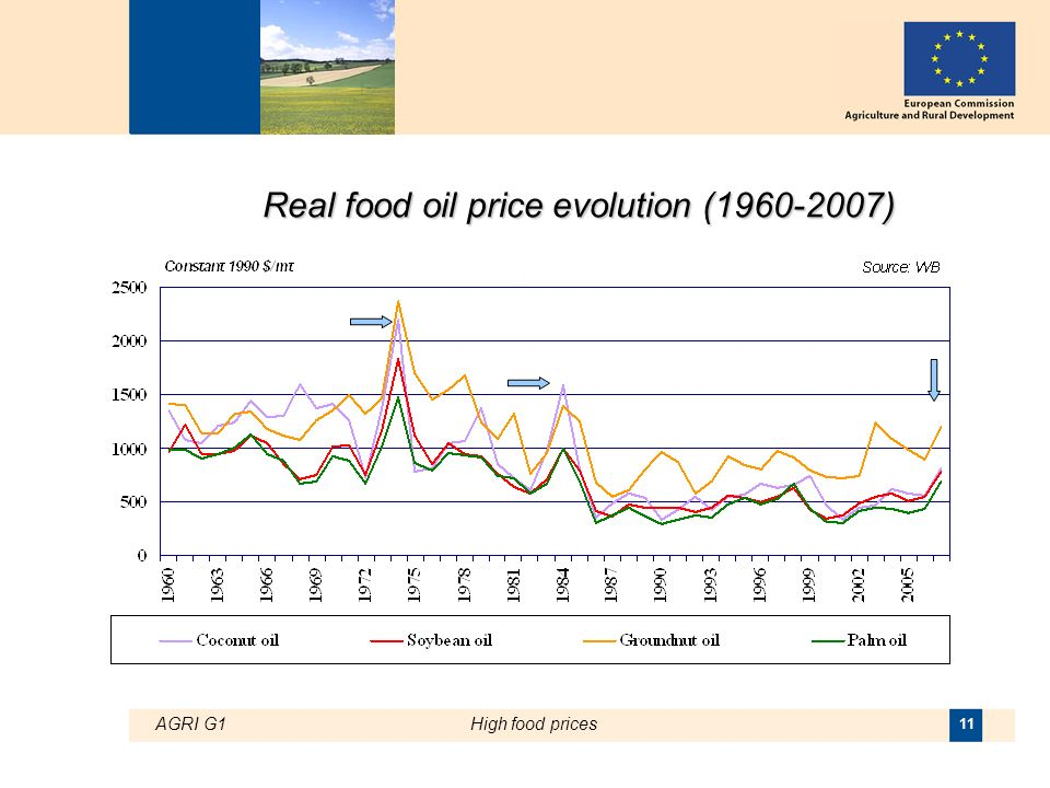 AGRI G1High food prices 11 Real food oil price evolution ( )