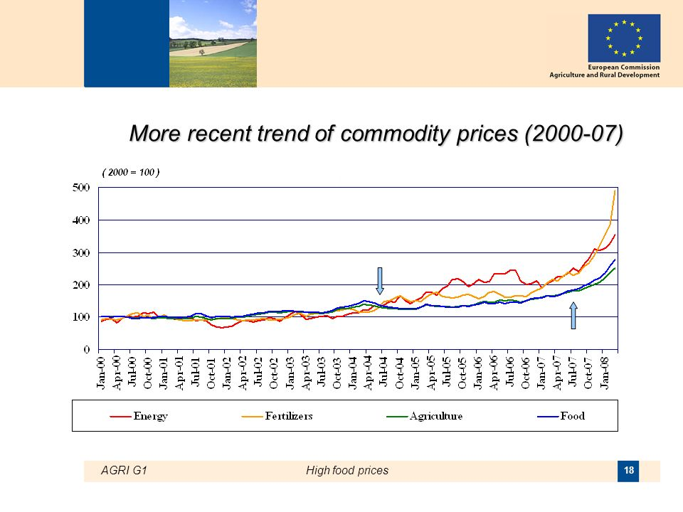 AGRI G1High food prices 18 More recent trend of commodity prices ( )