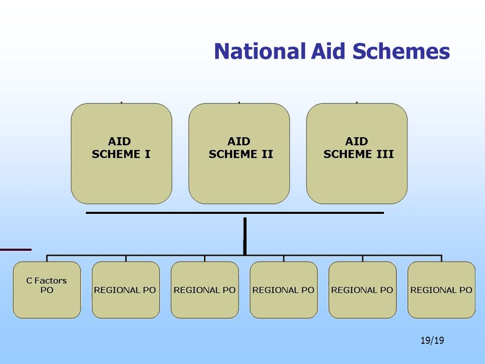 19/19 National Aid Schemes