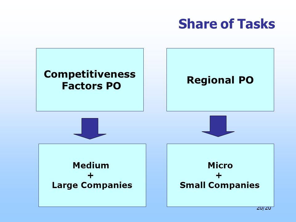 20/20 Share of Tasks Competitiveness Factors PO Micro + Small Companies Medium + Large Companies Regional PO