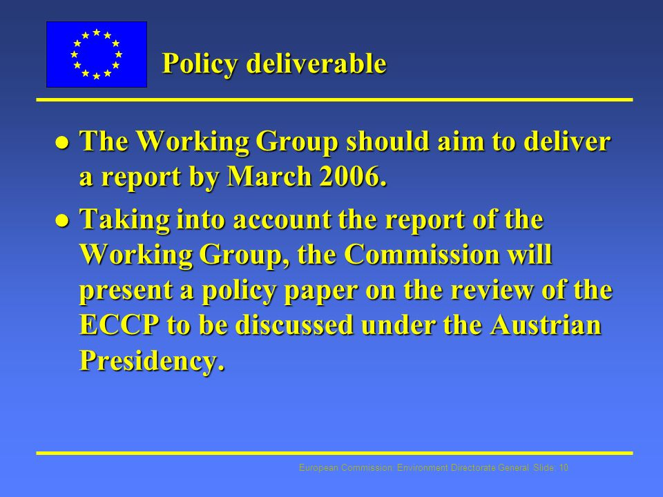 European Commission: Environment Directorate General Slide: 10 Policy deliverable l The Working Group should aim to deliver a report by March 2006.