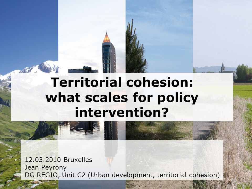 Territorial cohesion: what scales for policy intervention.