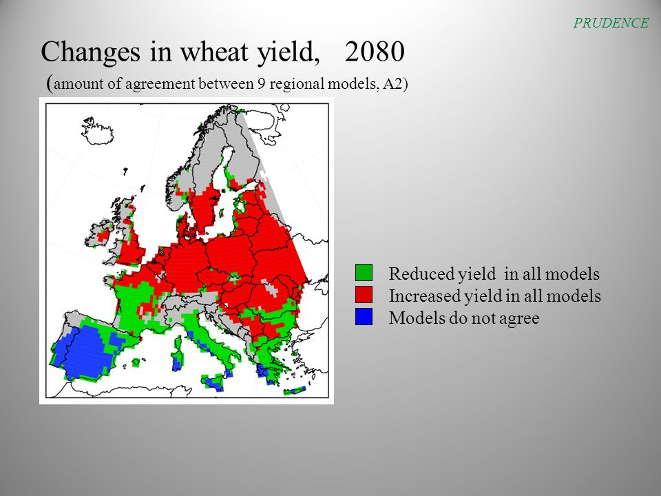 Changes in wheat yield, 2080 ( amount of agreement between 9 regional models, A2) PRUDENCE Reduced yield in all models Increased yield in all models Models do not agree