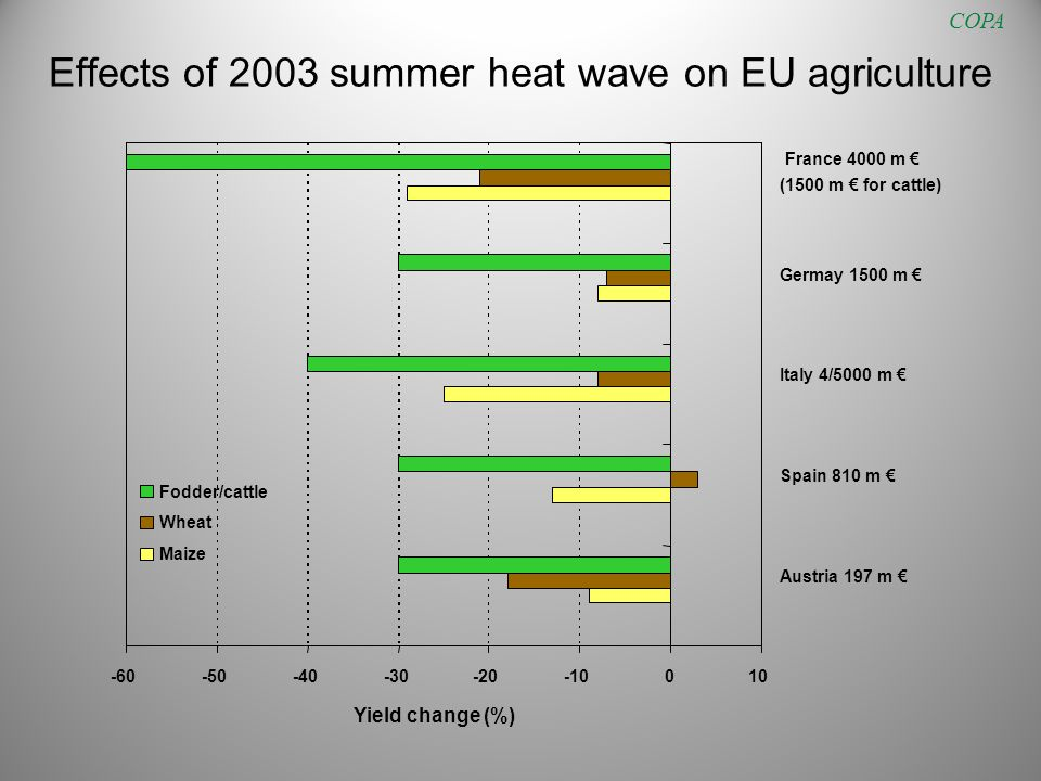 Effects of 2003 summer heat wave on EU agriculture COPA