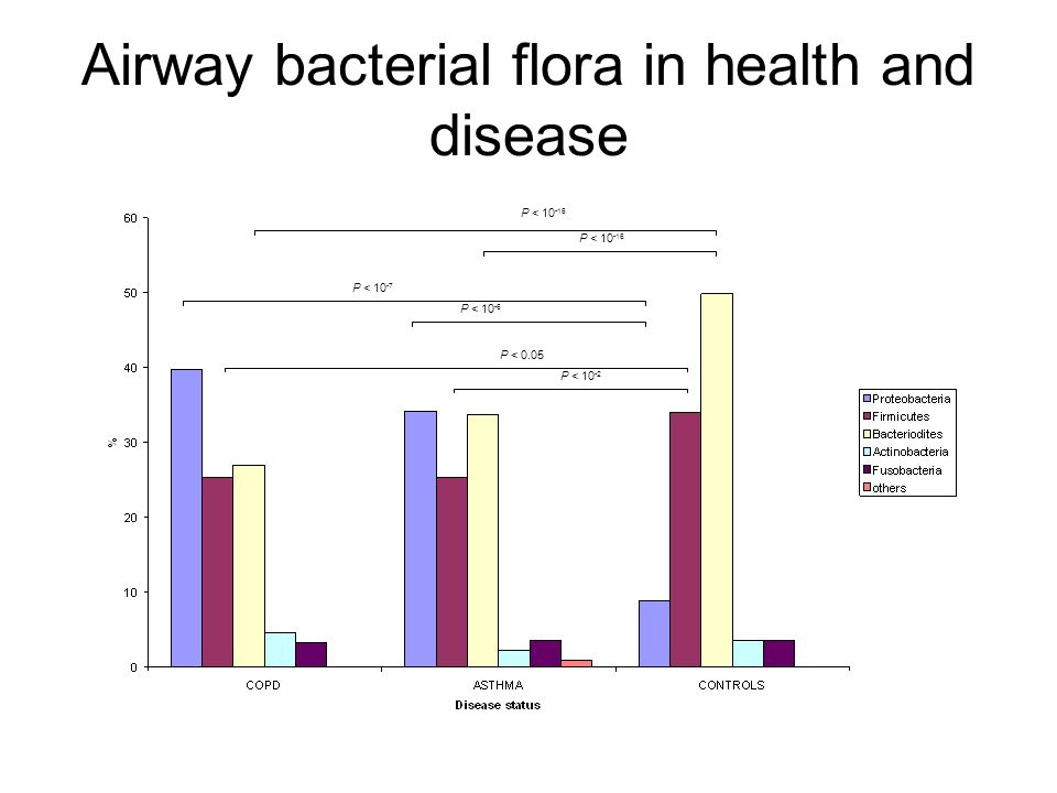 Airway bacterial flora in health and disease P < 10 -16 P < 10 -6 P < 10 -7 P < 10 -2 P < 0.05