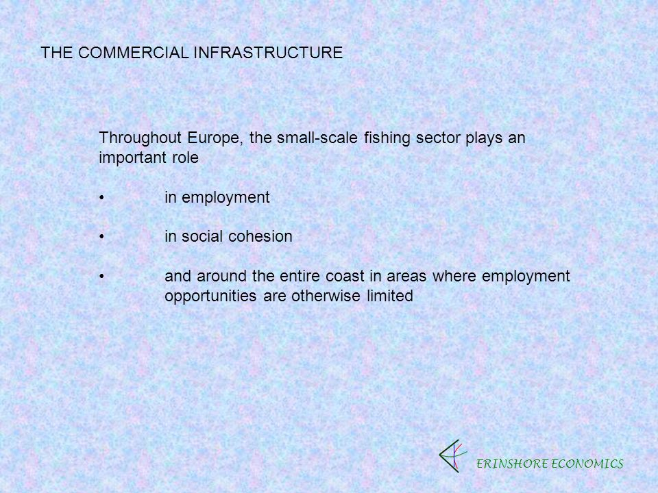 ERINSHORE ECONOMICS THE COMMERCIAL INFRASTRUCTURE Throughout Europe, the small-scale fishing sector plays an important role in employment in social cohesion and around the entire coast in areas where employment opportunities are otherwise limited