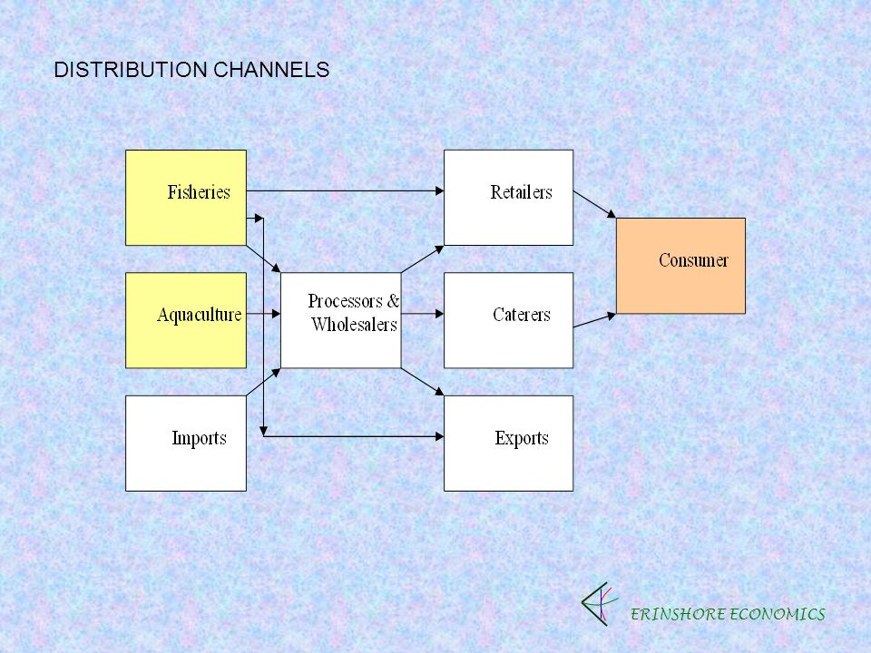ERINSHORE ECONOMICS DISTRIBUTION CHANNELS
