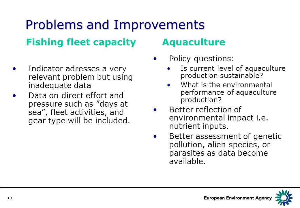 11 Problems and Improvements Indicator adresses a very relevant problem but using inadequate data Data on direct effort and pressure such as days at sea, fleet activities, and gear type will be included.