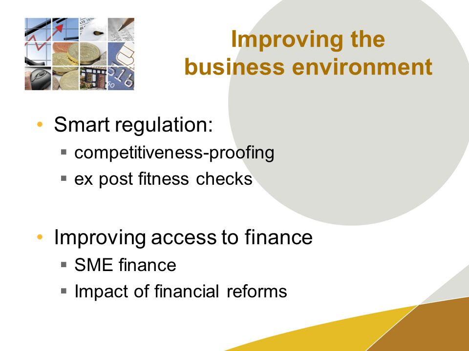 Improving the business environment Smart regulation: competitiveness-proofing ex post fitness checks Improving access to finance SME finance Impact of financial reforms