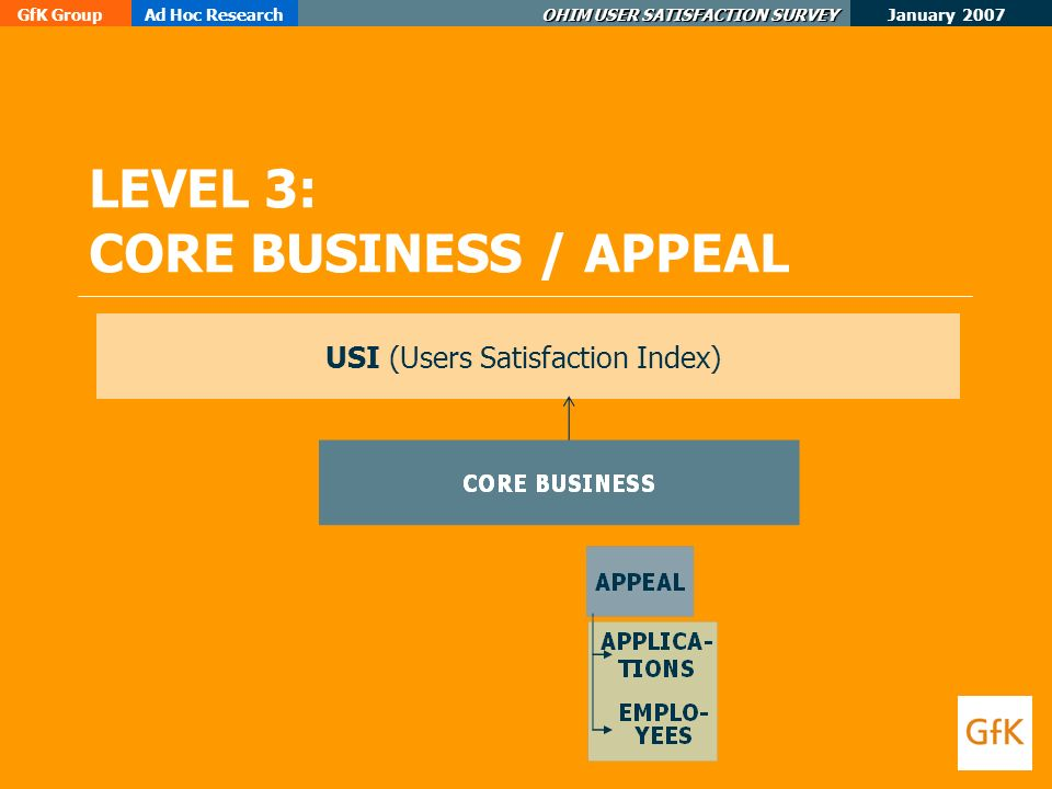 January 2007 GfK GroupAd Hoc Research OHIM USER SATISFACTION SURVEY LEVEL 3: CORE BUSINESS / APPEAL USI (Users Satisfaction Index)