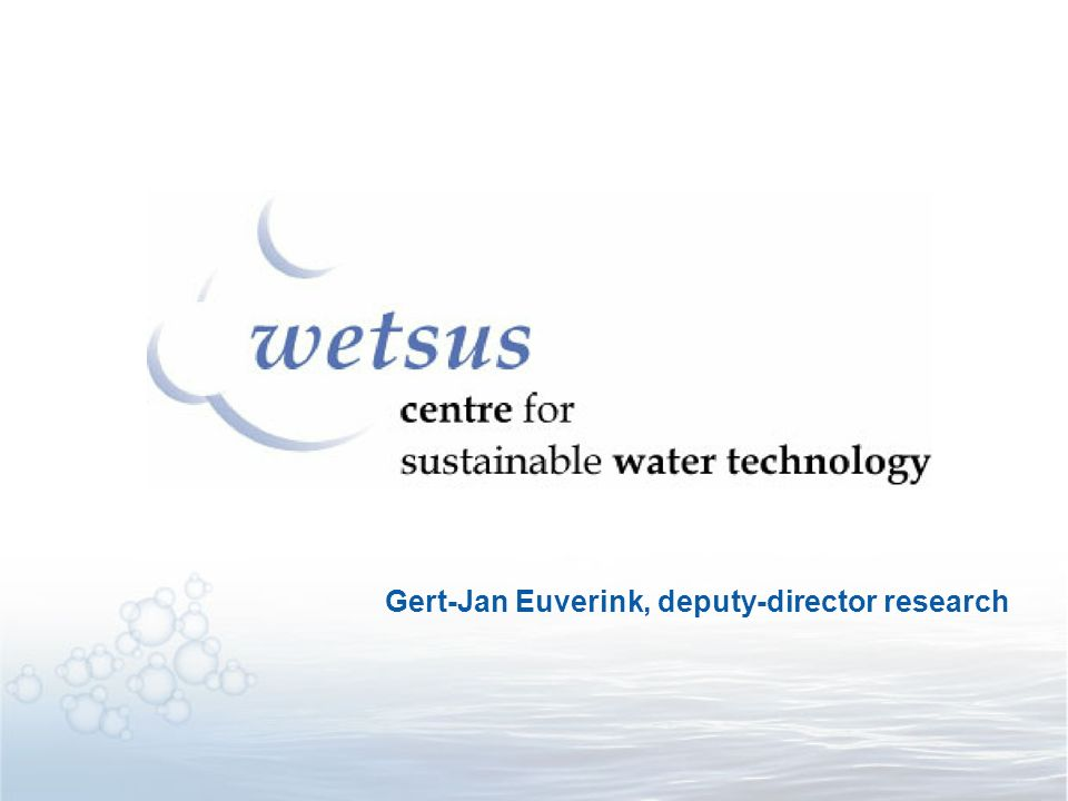 Gert-Jan Euverink, deputy-director research