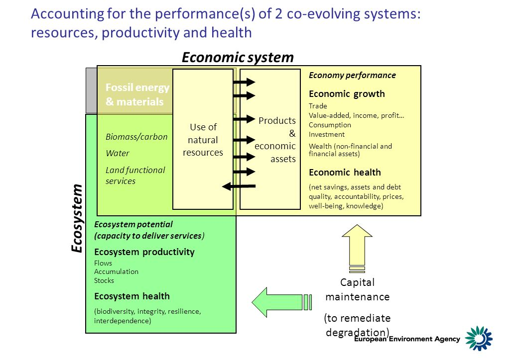 Products & economic assets Fossil energy & materials Biomass/carbon Water Land functional services Economy performance Economic growth Trade Value-added, income, profit… Consumption Investment Wealth (non-financial and financial assets) Economic health (net savings, assets and debt quality, accountability, prices, well-being, knowledge) Ecosystem potential (capacity to deliver services) Ecosystem productivity Flows Accumulation Stocks Ecosystem health (biodiversity, integrity, resilience, interdependence) Capital maintenance (to remediate degradation) Accounting for the performance(s) of 2 co-evolving systems: resources, productivity and health Economic system Ecosystem Use of natural resources