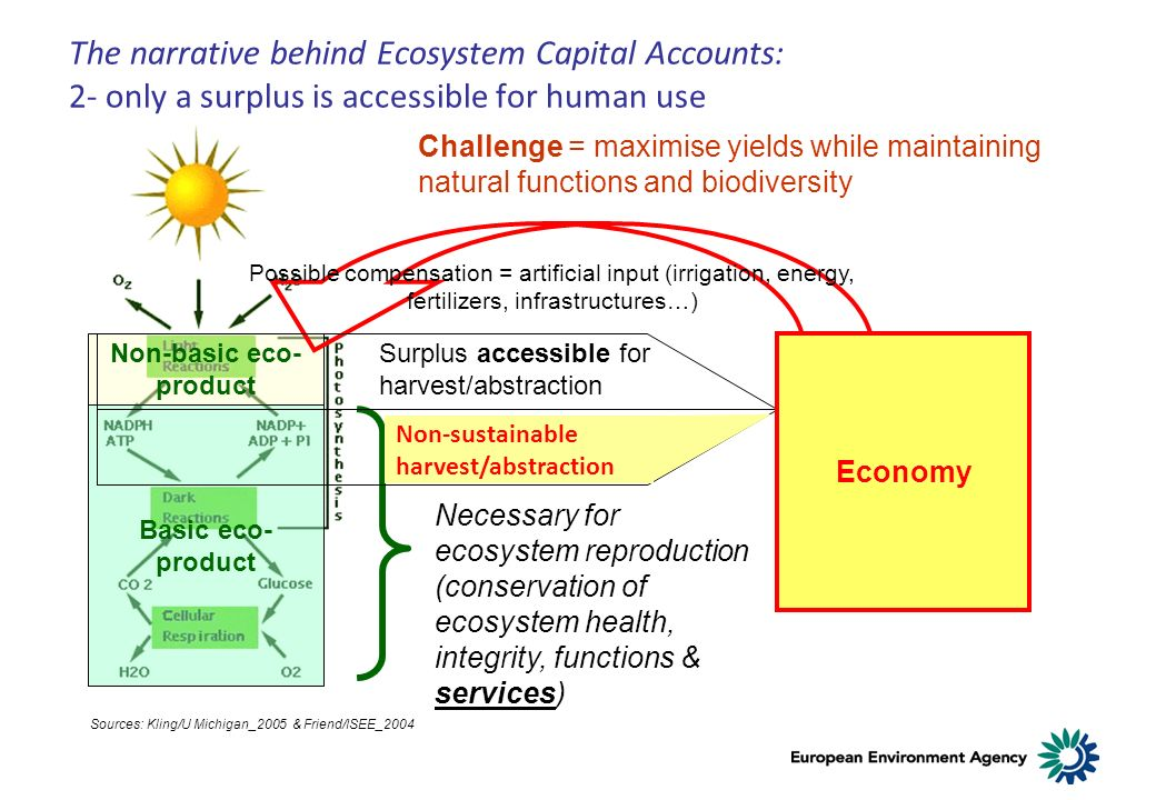 The narrative behind Ecosystem Capital Accounts: 2- only a surplus is accessible for human use Basic eco- product Non-basic eco- product Sources: Kling/U Michigan_2005 & Friend/ISEE_2004 Possible compensation = artificial input (irrigation, energy, fertilizers, infrastructures…) Challenge = maximise yields while maintaining natural functions and biodiversity Necessary for ecosystem reproduction (conservation of ecosystem health, integrity, functions & services) Surplus accessible for harvest/abstraction Non-sustainable harvest/abstraction Economy