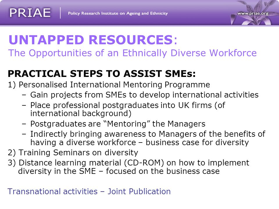 UNTAPPED RESOURCES: The Opportunities of an Ethnically Diverse Workforce PRACTICAL STEPS TO ASSIST SMEs: 1) Personalised International Mentoring Programme –Gain projects from SMEs to develop international activities –Place professional postgraduates into UK firms (of international background) –Postgraduates are Mentoring the Managers –Indirectly bringing awareness to Managers of the benefits of having a diverse workforce – business case for diversity 2) Training Seminars on diversity 3) Distance learning material (CD-ROM) on how to implement diversity in the SME – focused on the business case Transnational activities – Joint Publication