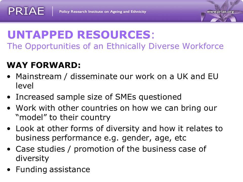 UNTAPPED RESOURCES: The Opportunities of an Ethnically Diverse Workforce WAY FORWARD: Mainstream / disseminate our work on a UK and EU level Increased sample size of SMEs questioned Work with other countries on how we can bring our model to their country Look at other forms of diversity and how it relates to business performance e.g.
