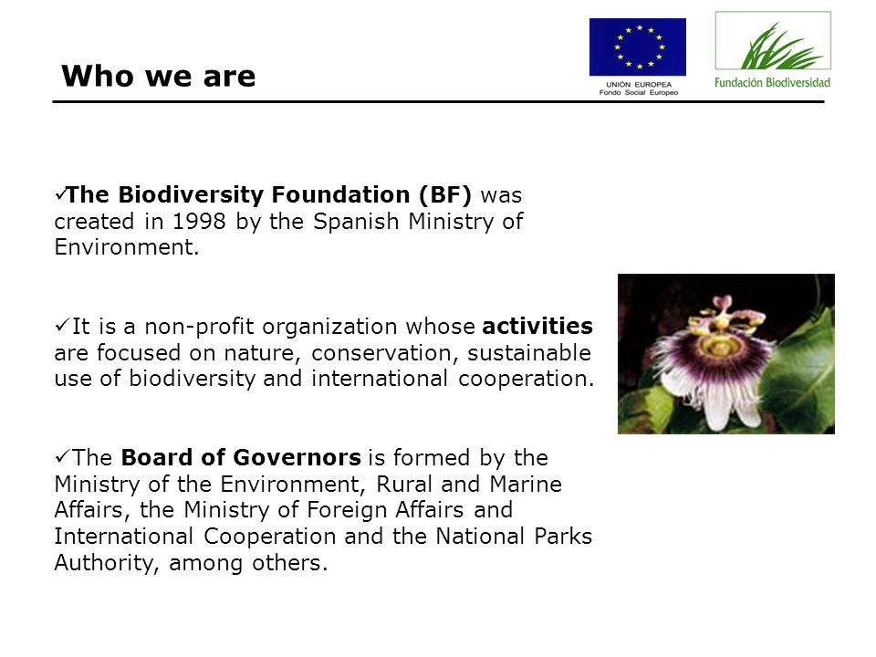 The Biodiversity Foundation (BF) was created in 1998 by the Spanish Ministry of Environment.