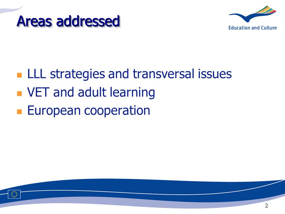 2 Areas addressed LLL strategies and transversal issues VET and adult learning European cooperation