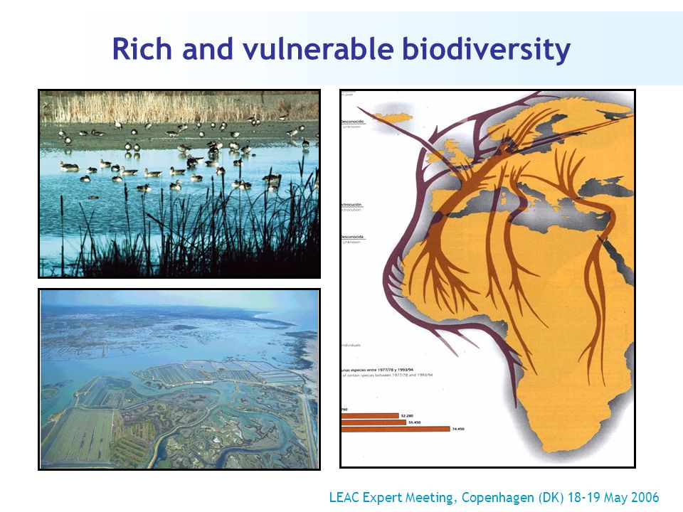 Rich and vulnerable biodiversity LEAC Expert Meeting, Copenhagen (DK) 18-19 May 2006