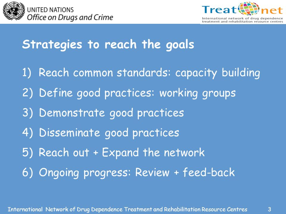3International Network of Drug Dependence Treatment and Rehabilitation Resource Centres Strategies to reach the goals 1)Reach common standards: capacity building 2)Define good practices: working groups 3)Demonstrate good practices 4)Disseminate good practices 5)Reach out + Expand the network 6)Ongoing progress: Review + feed-back