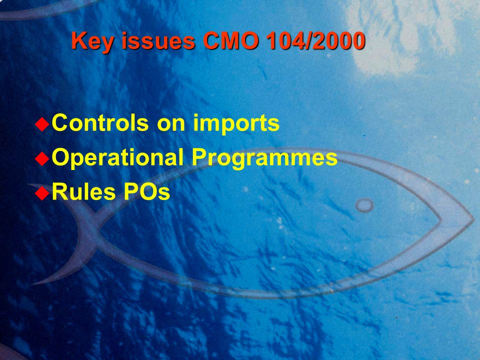 Key issues CMO 104/2000 Key issues CMO 104/2000 Controls on imports Operational Programmes Rules POs