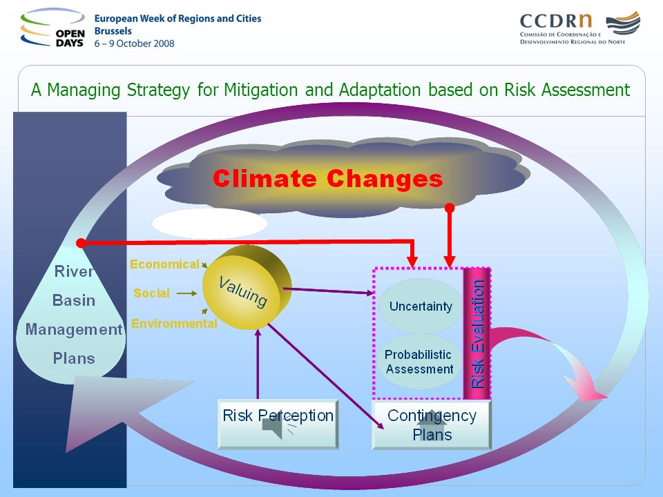 A Managing Strategy for Mitigation and Adaptation based on Risk Assessment
