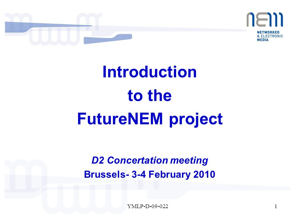 1YMLP-D-09-022 Introduction to the FutureNEM project D2 Concertation meeting Brussels- 3-4 February 2010