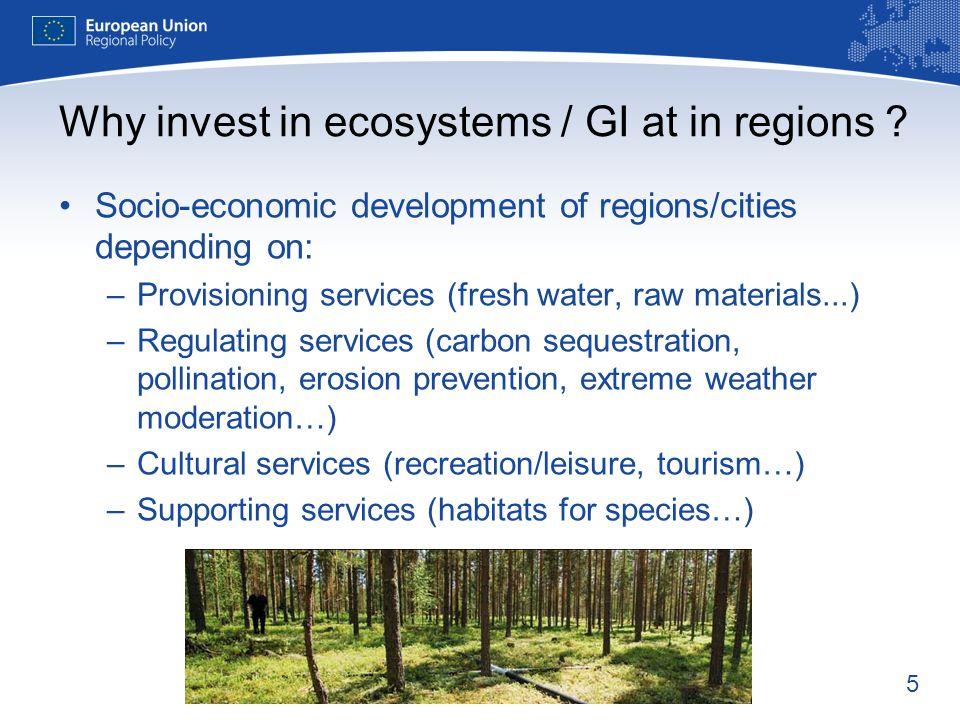 5 Socio-economic development of regions/cities depending on: –Provisioning services (fresh water, raw materials...) –Regulating services (carbon sequestration, pollination, erosion prevention, extreme weather moderation…) –Cultural services (recreation/leisure, tourism…) –Supporting services (habitats for species…) Why invest in ecosystems / GI at in regions