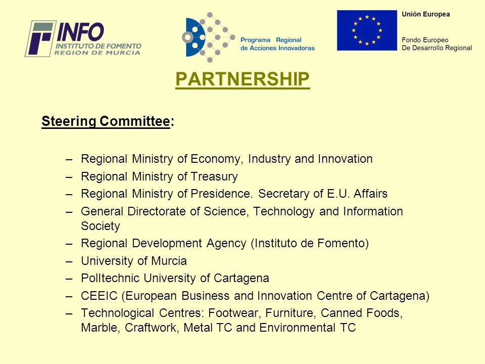 PARTNERSHIP Steering Committee: –Regional Ministry of Economy, Industry and Innovation –Regional Ministry of Treasury –Regional Ministry of Presidence.