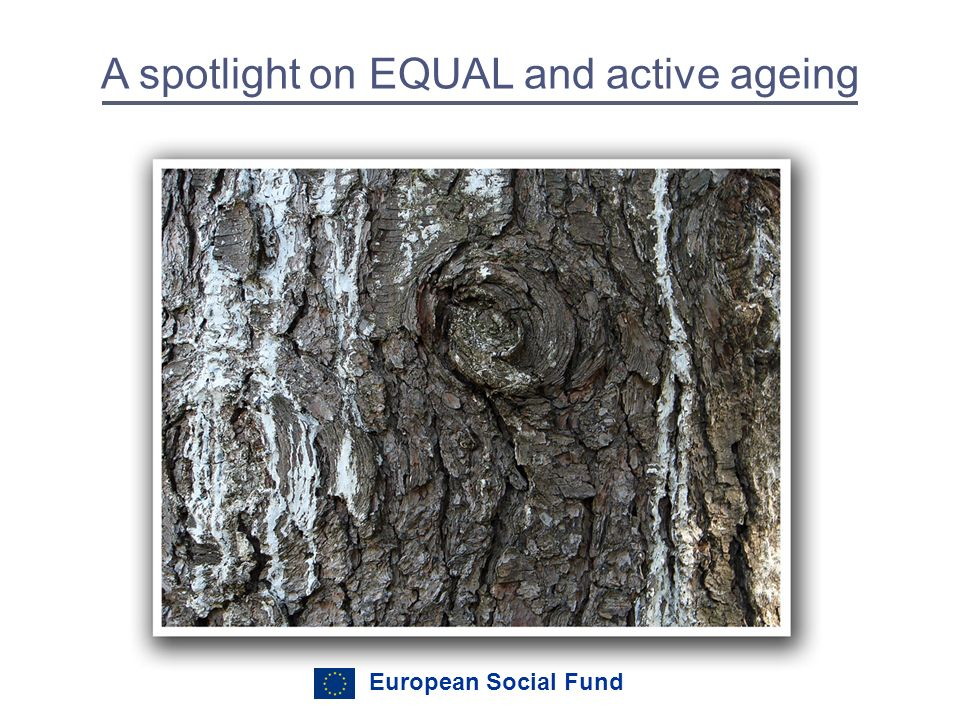 European Social Fund A spotlight on EQUAL and active ageing