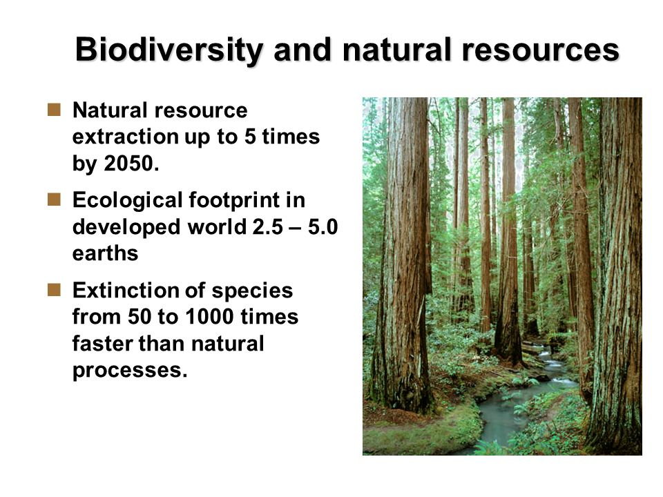 Biodiversity and natural resources Natural resource extraction up to 5 times by 2050.