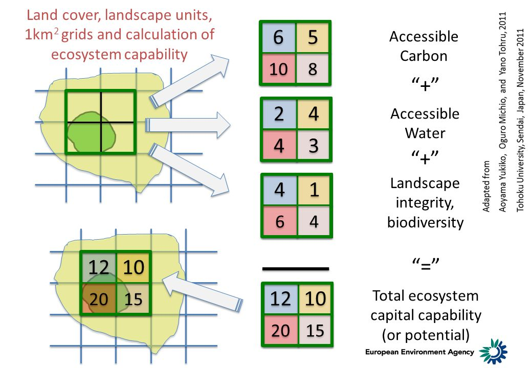 Land cover, landscape units, 1km 2 grids and calculation of ecosystem capability 4 4 1 1 6 6 4 4 2 2 4 4 4 4 3 3 6 6 5 5 10 8 8 12 10 20 15 Accessible Carbon Accessible Water Landscape integrity, biodiversity + = + Total ecosystem capital capability (or potential) 12 10 20 15
