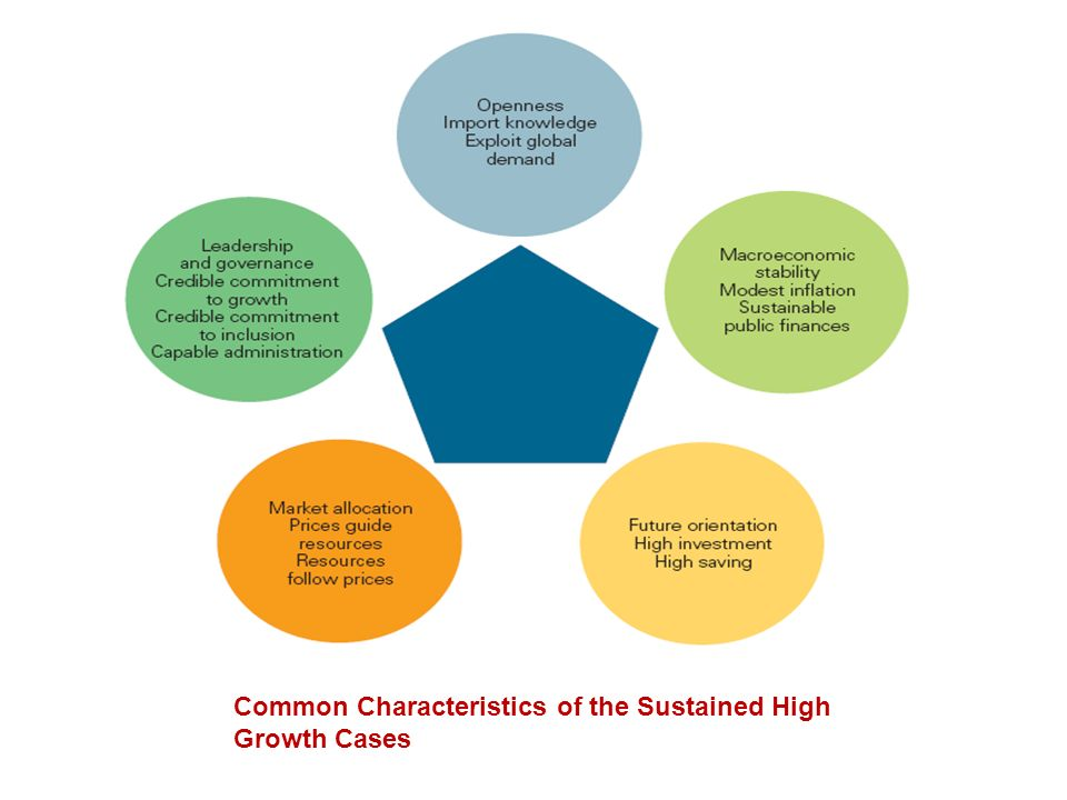 Common Characteristics of the Sustained High Growth Cases