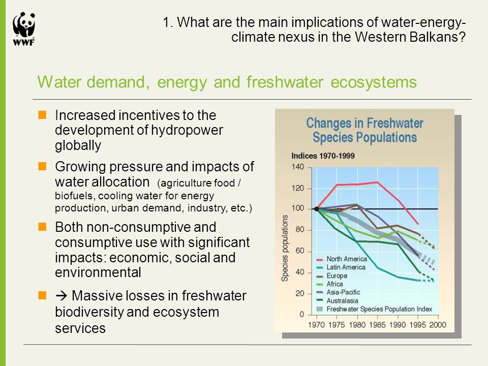Water demand, energy and freshwater ecosystems Increased incentives to the development of hydropower globally Growing pressure and impacts of water allocation (agriculture food / biofuels, cooling water for energy production, urban demand, industry, etc.) Both non-consumptive and consumptive use with significant impacts: economic, social and environmental Massive losses in freshwater biodiversity and ecosystem services 1.
