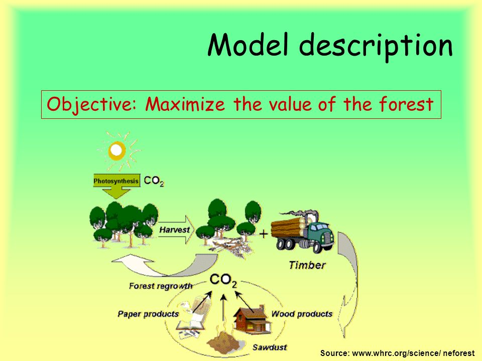 Model description Objective: Maximize the value of the forest Source: www.whrc.org/science/ neforest