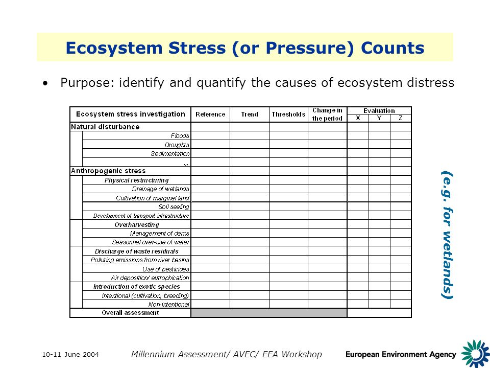 10-11 June 2004 Millennium Assessment/ AVEC/ EEA Workshop Ecosystem Stress (or Pressure) Counts Purpose: identify and quantify the causes of ecosystem distress X = negligible, Y = moderate, Z = heavy (e.g.